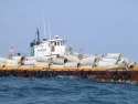110' Barge at Jim Caudle Reef